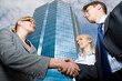 Successful businesspeople handshaking