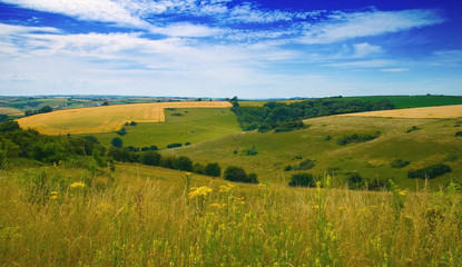View over the Dorset Hills, Southern UK