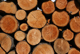 Stack of fresh firewood - interesting wooden abstract poster