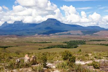 Tepui in Gran Sabana, Venezuela, South America