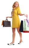Girl with set of purchases poster