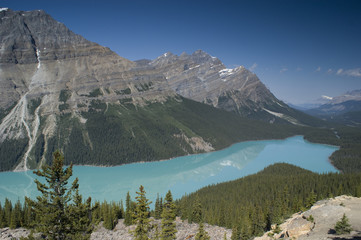 Peyto Lake in Banff National Park Canada