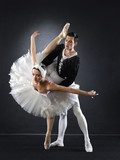 Obraz na płótnie Ballet dancers