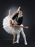 Fotoroleta Ballet dancers