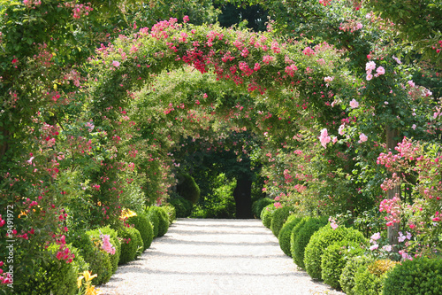 Roses Arch in the Garden - 9491972