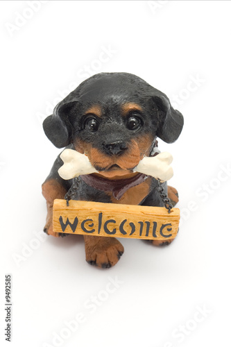 "Dogie with a ""Welcome"" sign"