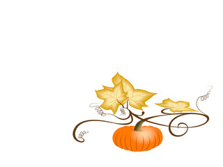 Autumn pumpkin with dry leaves. With clipping path.
