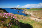 Fototapety Seacoast of Ireland