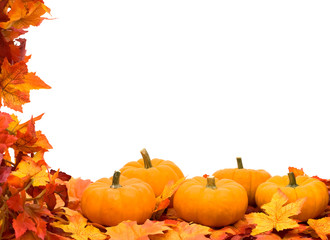 Fall leaves with pumpkin on white background, fall harvest frame