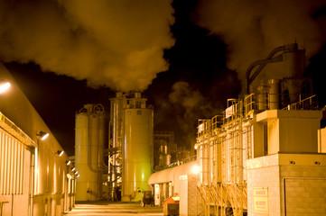 Tasman Pulp and Paper Mill