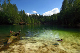 Emerald lake-National park of Adrspach rocks-Czech Rep. poster