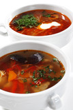 Solyanka and Fish Soup is a Thicks, Spices and Sours Soups poster