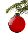 red christmas tree ball hanging from spruce leaf