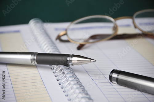 Business Books, Charts, Expenses, Bookkeeping, Pen w/ Glasses - 9522186