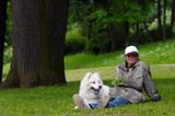 the samoyed dog - snow-white pet poster