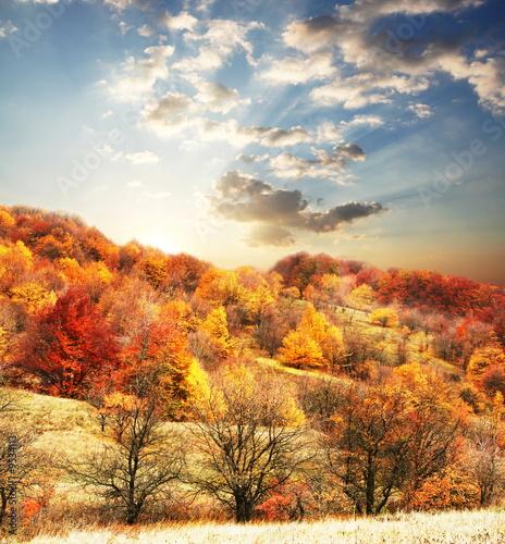 Jesienią sceny