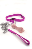 pink feminine dog leash chain and dog buiscuit . poster