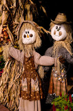 two happy scarecrows and dried corn stalks poster