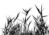 Grass Silhouette 03 - detailed illustration