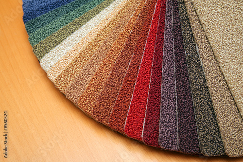 Samples of color of a carpet covering - 9560524