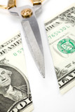 Cutting dollars, concept of Finance Problems, Recession poster