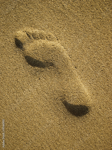 Footmark in Sand on the Beach