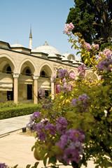 Garden in Topkapi Palace, Istanbul, Turkey