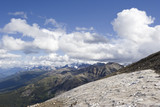 summit of mount whistler with snow patches in summer poster