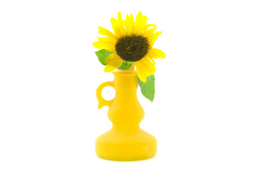 Bright sunflower in a bottle on the white background
