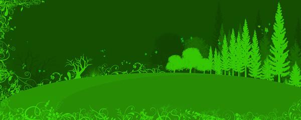 foresta - sfondo