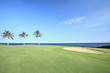 Golf Course on Green Ocean Shore of  Kona Island, Hawaii