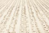 a long endless music-sheet. poster