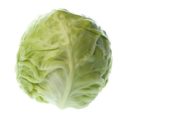 Isolated macro image of a cabbage.