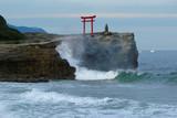 Shirahama beach on Izu peninsula poster