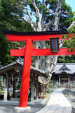 Shinto shrine in Japan poster