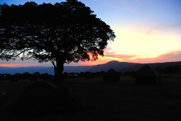 Sunrise in camping site