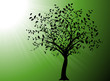 vector serie - gardening, tree with green backgound and sun