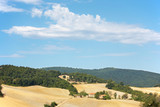 Italian countryside: typical tuscan hills. Italy poster