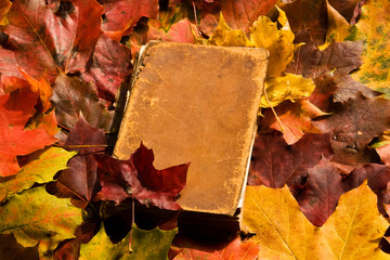 An old closed book on a background of a colored maple leafs