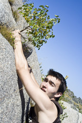 Boy hanging on a small tree