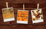 Thanksgiving Halloween Fall Images Hanging on a Rope poster