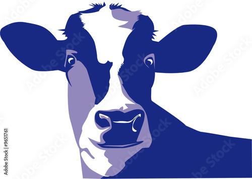 Blaue Kuh