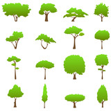Fototapety tree graphics vector
