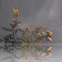 Style Ikebana