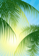 Leinwanddruck Bild Sun rays through the tropical leaf, vector illustration