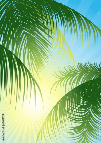 canvas print picture Sun rays through the tropical leaf, vector illustration