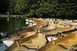 Barque bois de boulogne Paris