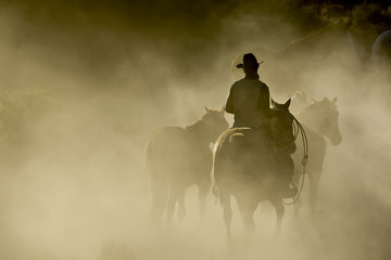 Single Cowboy with rope and horses in the dust