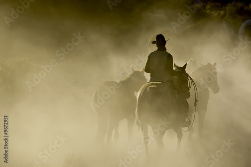 Leinwanddruck Bild Single Cowboy with rope and horses in the dust