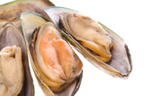 Isolated macro image of mussels. poster